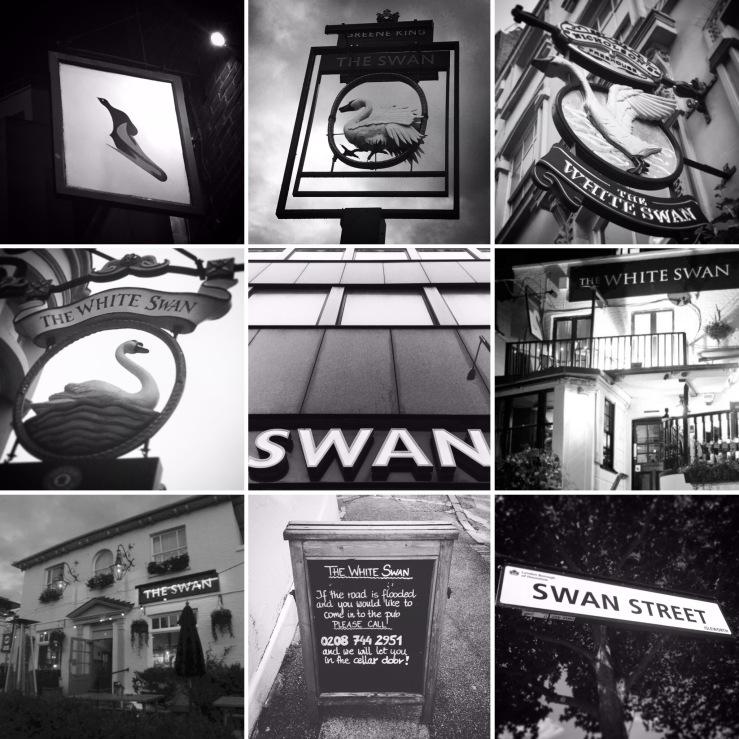 Swan Pubs